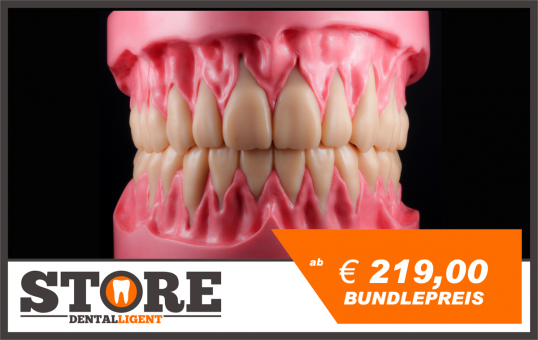 BUNDLE - lower & upper jaw model with root teeth in a pink acrylic base