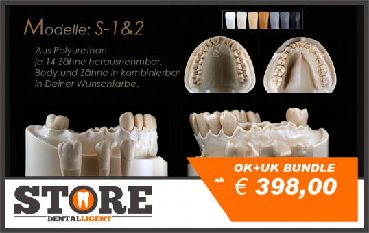 DEMO Modell S-3-OK +  UK BUNDLE mit je 14 anatomischen, herausnehmbaren Zähnen