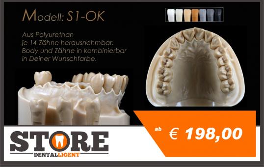 DEMO Modell S-1- OK mit 14 anatomischen, herausnehmbaren Zähnen