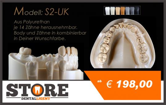 DEMO Modell S-2- UK mit 14 anatomischen, herausnehmbaren Zähnen